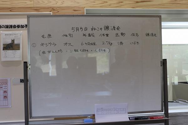 20190505譲渡会_190505_0017