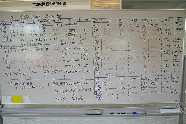 20190616 譲渡会_190617_0050