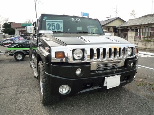 P1000985 (500x375)