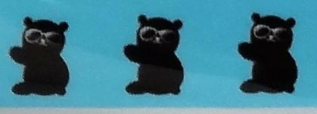 こんなクマです。