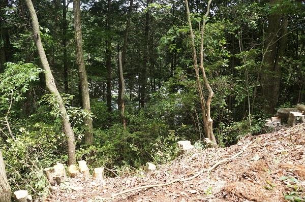 伐採作業後、写真ではわかりにくいですが、鬼山の下を走る道路も見えるようになりました!