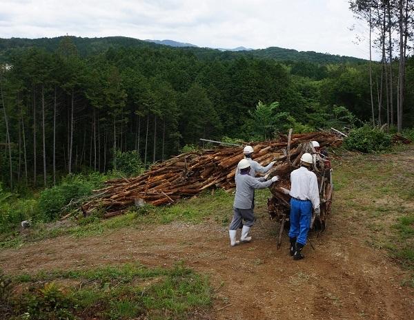 運搬車で運んでは積み下ろし、丸木と根っこ部分に分けて積んで捨てます