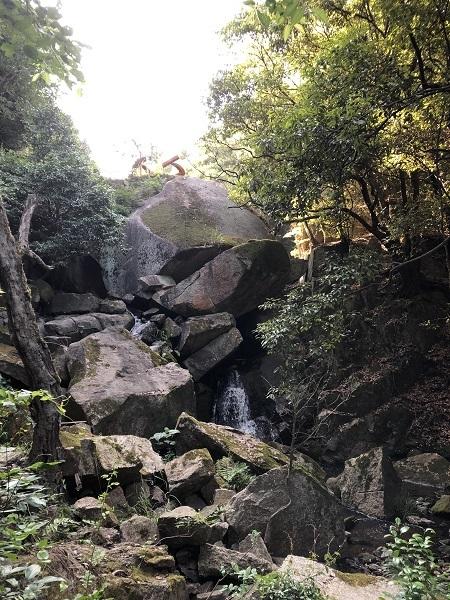 この日の一の滝の様子、近くにヤマガラの巣箱が置かれてます♪