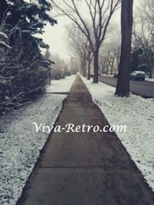 snow-in-may2019.jpg