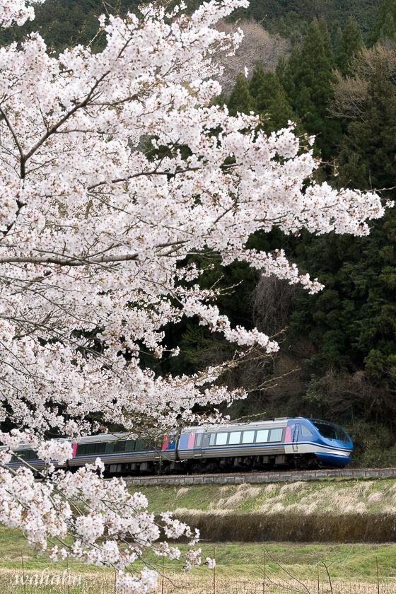 310413chizu-4.jpg