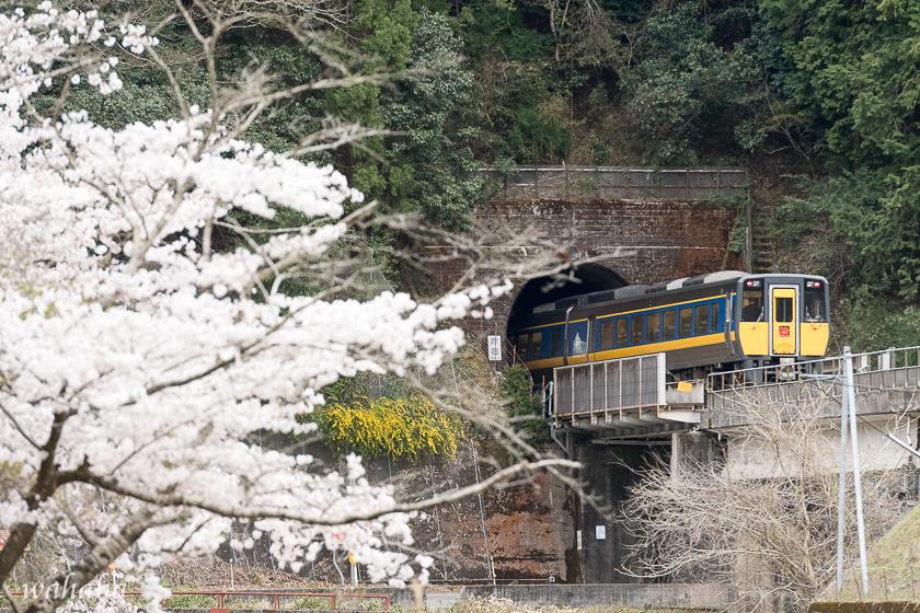310413chizu-5.jpg