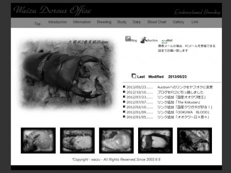 Waizu_Dorcus_Office.jpg