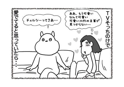 13052019_cat4koma2.jpg