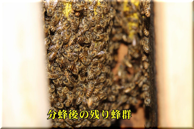 1bunpou190527_013.jpg