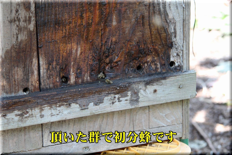 1bunpou190527_015.jpg