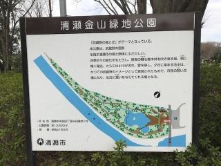 清瀬金山緑地_01