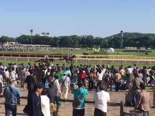 東京競馬場_06