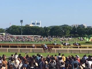 東京競馬場_07