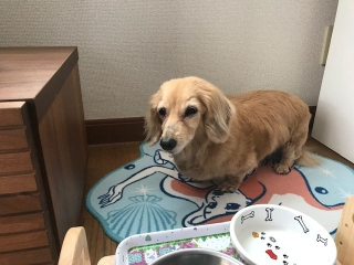 ナナちゃん17歳_02