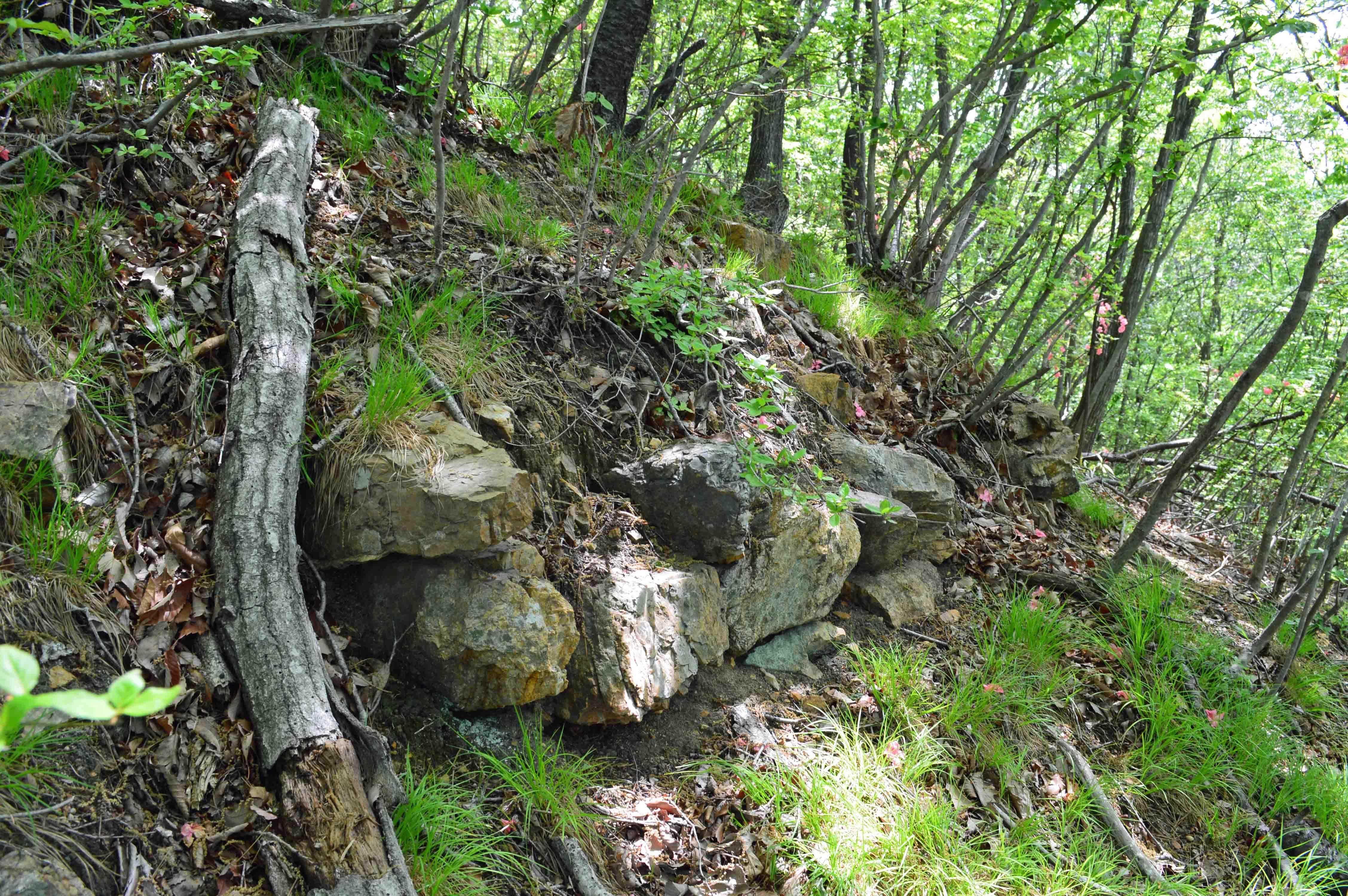 浅利城 主郭の石積