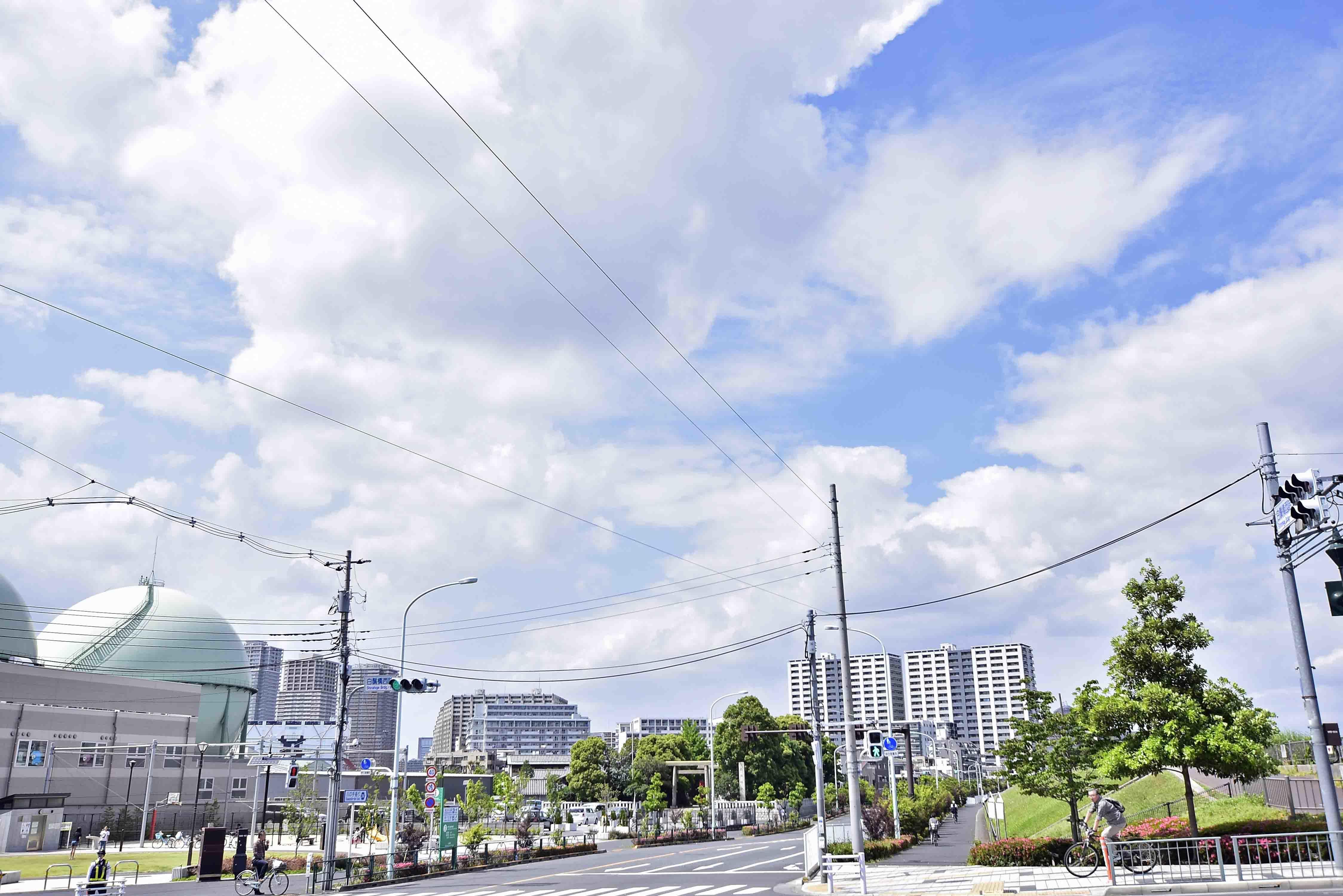 石浜城遠景