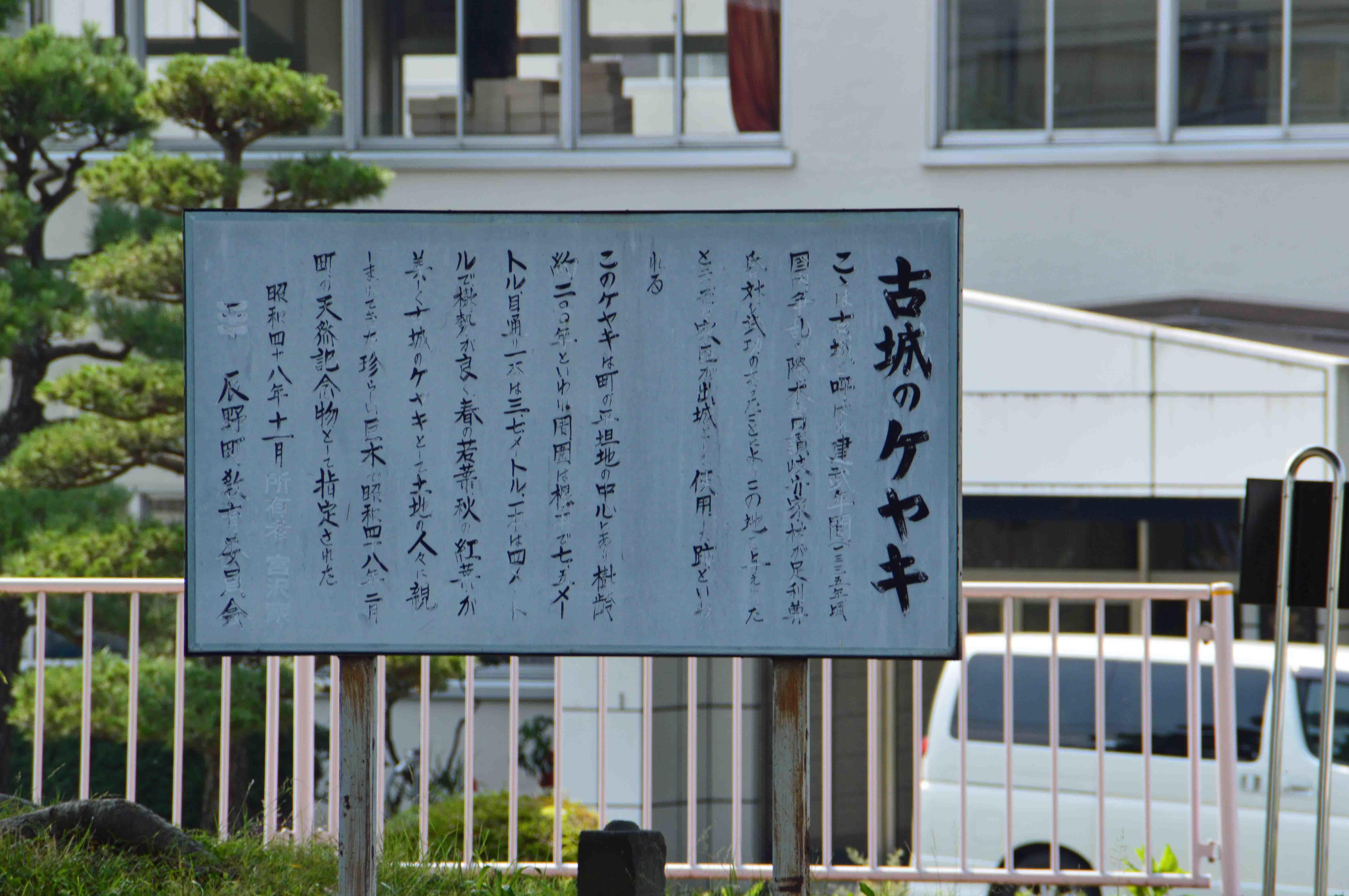 DSC_0018改