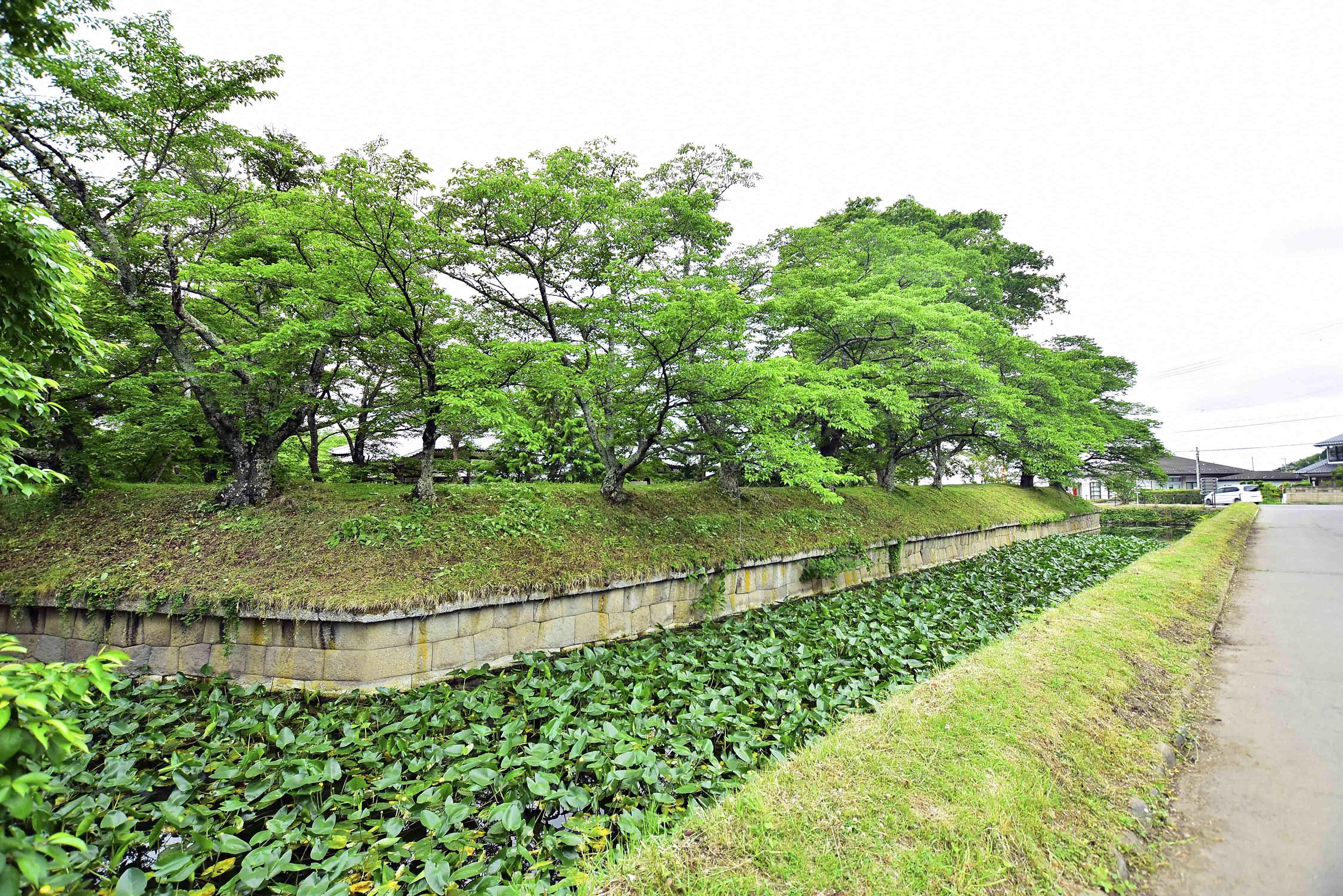 大手橋 右側の堀