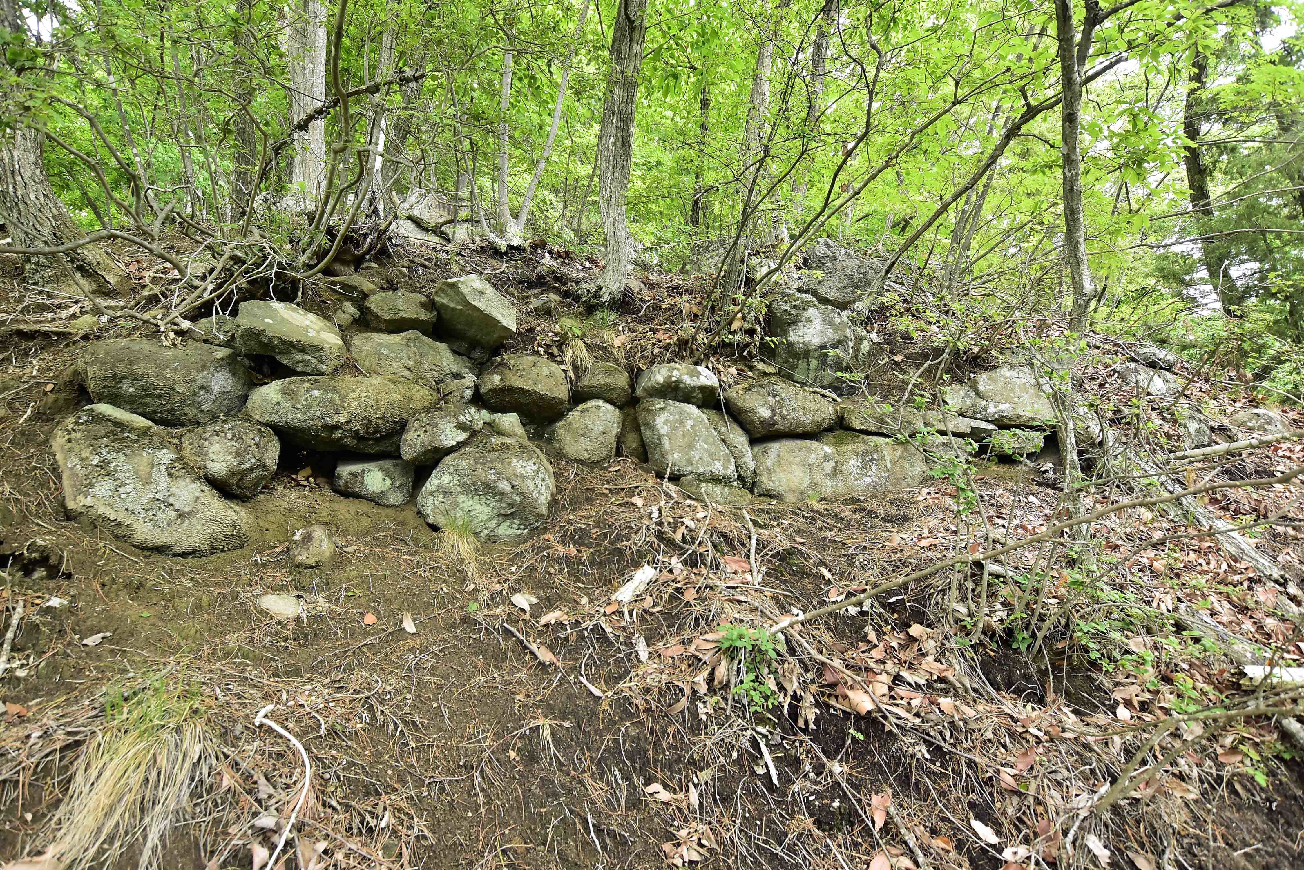 志賀城 大手に残る石積