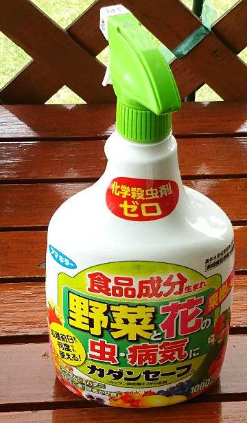 humakiraaDSC_0569.jpg