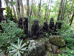 どこかで見たことがあるようなお猿さんたち