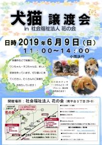 2019年度 犬猫譲渡会花の会 チラシ6月9日