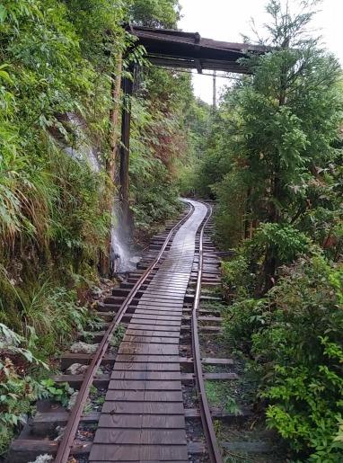 6月9日 縄文杉へのトロッコ道(5月18日の豪雨で滝になっていた箇所)