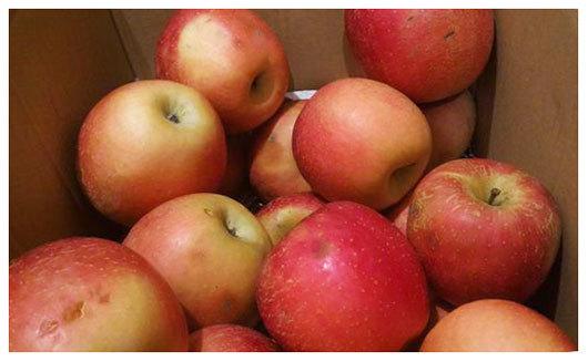 りんご値引き品