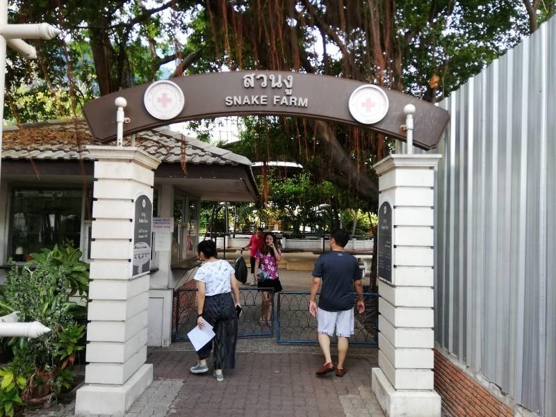 タイ予防接種_190526_0010