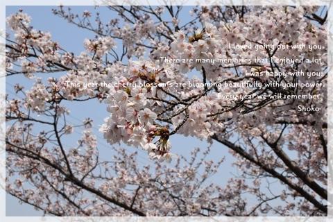 4月29日(祝)a